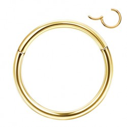 Tytanowy złoty segment ring clicker PK409