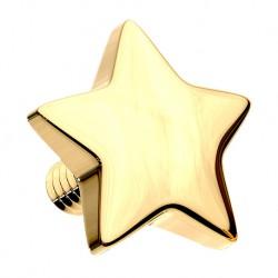 Nakrętka na microdermal - z 14K złota, gwiazdka PI705